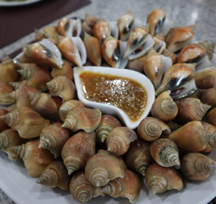 Wing shell Krabi